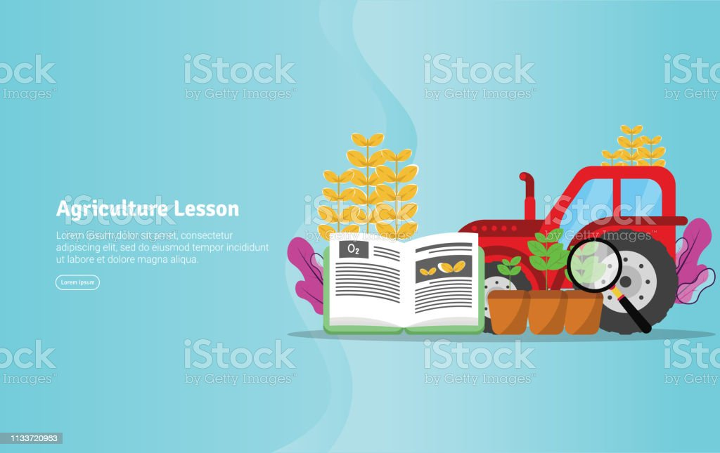 Agriculture Lesson Concept Educational And Scientific Illustration Banner Suitable For Wallpaper Banner Background Card Book Illustration Or Web Landing Page And Use For Marketing Business Or Promotion Stock Illustration Download Image