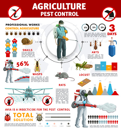 Agriculture pest control infographics with insects