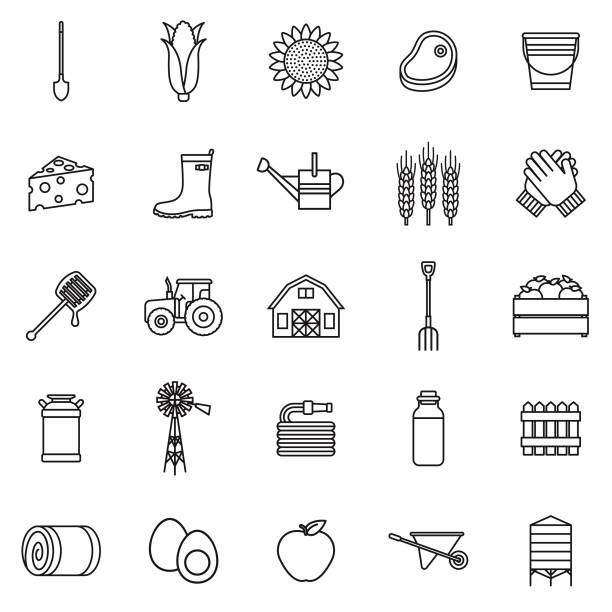 stockillustraties, clipart, cartoons en iconen met landbouw dunne lijn overzicht icon set - kruiwagen met gereedschap