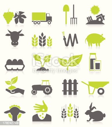 istock Agriculture 178242749