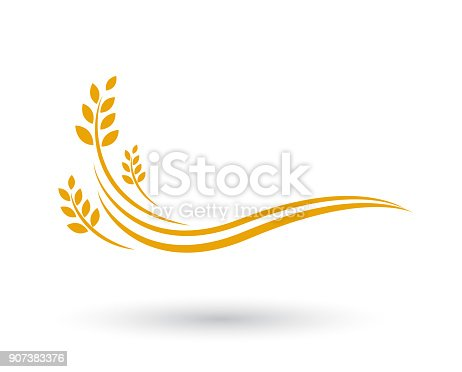 istock Agriculture wheat   Template vector icon design 907383376