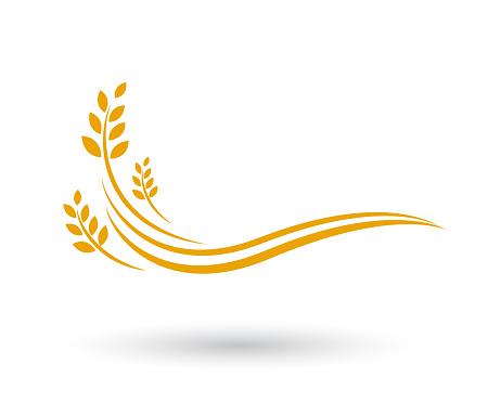 Landwirtschaft Weizen Vorlage Vektor Icondesign Stock Vektor Art und mehr Bilder von Agrarbetrieb