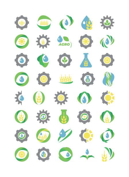 illustrazioni stock, clip art, cartoni animati e icone di tendenza di agro, organic, eco logos set - erba medica