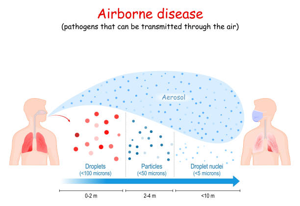 ilustrações de stock, clip art, desenhos animados e ícones de airborne disease. virus human-to-human transmission. - covid flight