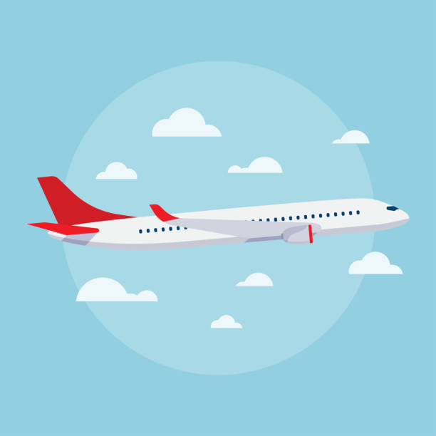 illustrations, cliparts, dessins animés et icônes de avions à illustrations vectorielles - avion