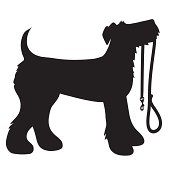 AIredale Terrier Leash