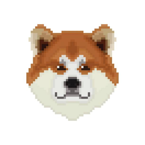 Akita Inu dog head in pixel art style. Vector illustration. – artystyczna grafika wektorowa