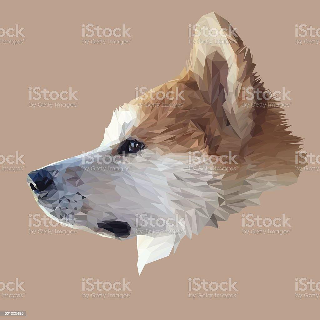Akita Inu dog low poly. – artystyczna grafika wektorowa