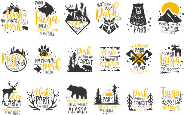 Alaska National Park Promo Signs Series Of Colorful Vector Design Templates With Wilderness Elements Silhouettes Alaska National Park Promo Signs Series Of Colorful Vector Design Templates With Wilderness Elements Silhouettes. Natural Protected Forest Park Labels In Flat Bright Illustrations With Text. moose stock illustrations