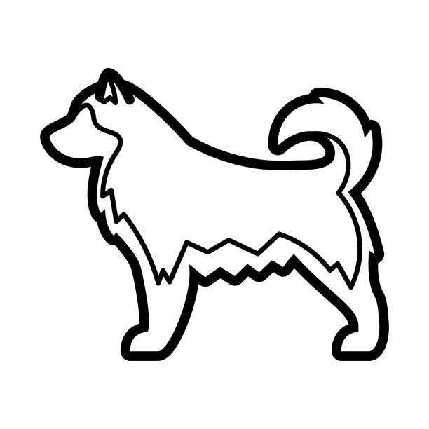 Alaskan Malamute Dog Icon Isolated On White Background Vector Alaskan Malamute Dog Icon Isolated On White Background malamute stock illustrations