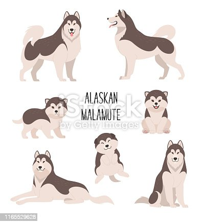 Vector illustration of cartoon cute dogs and puppies in various poses. Isolated on white.