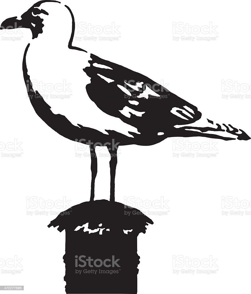 Albatross royalty-free stock vector art
