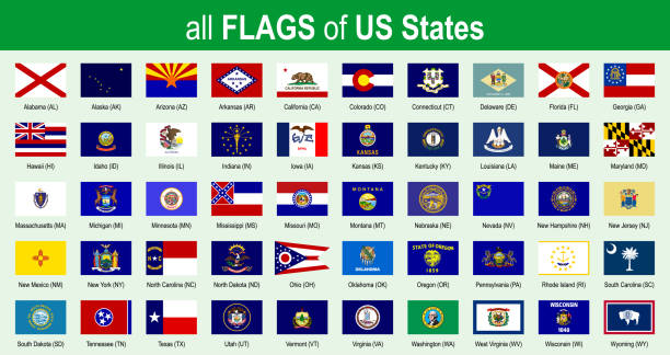 All 50 US State Flags - Alphabetically - Icon Set - Vector Illustration All 50 US State Flags - Alphabetically - Icon Set - Vector Illustration florida us state stock illustrations