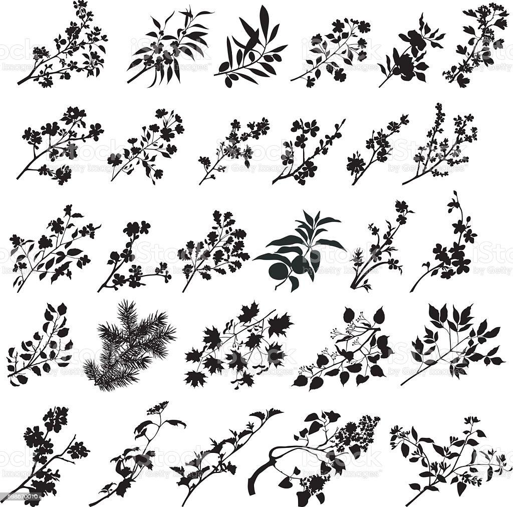 All branches vector art illustration