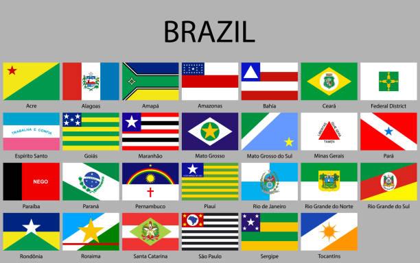 bildbanksillustrationer, clip art samt tecknat material och ikoner med alla flaggor av påstår av brasilien. - brasilien flagga