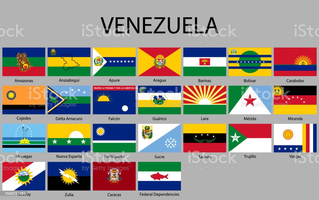 All Flags States Of Venezuela Stock Vector Art More Images Of
