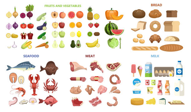 wszystkie zestaw żywności. - grupa przedmiotów stock illustrations