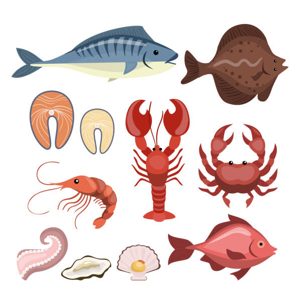 all seafood set. - redfish stock illustrations, clip art, cartoons, & icons