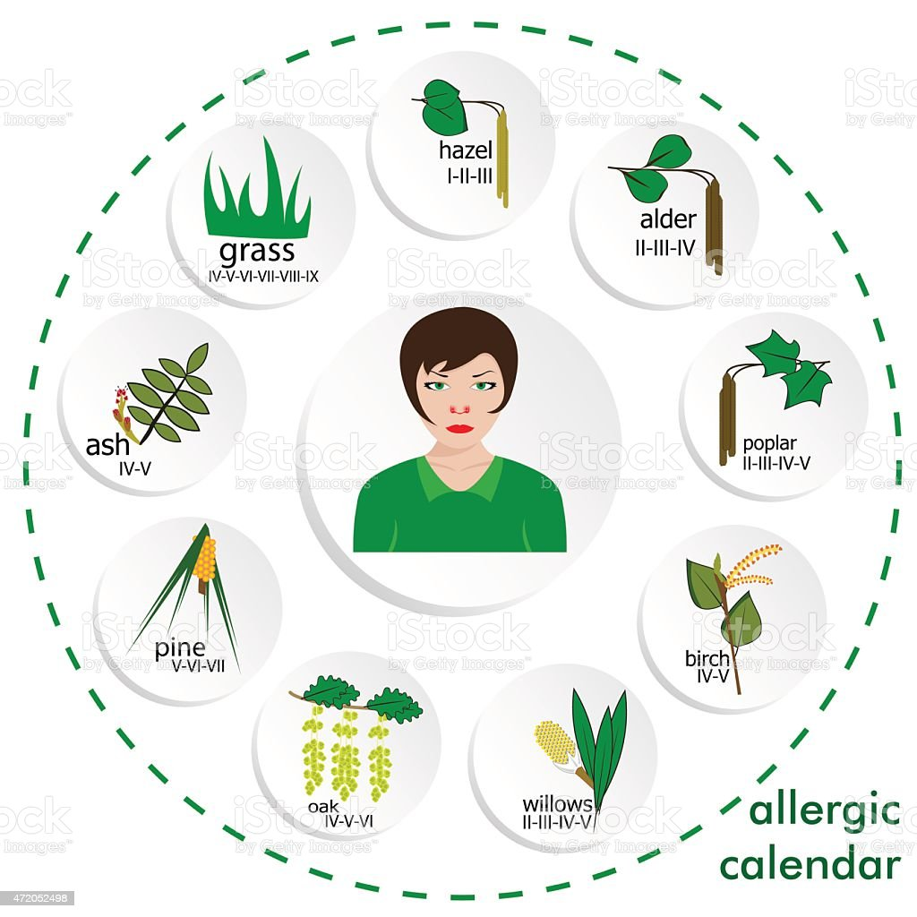 allergy calendar vector art illustration