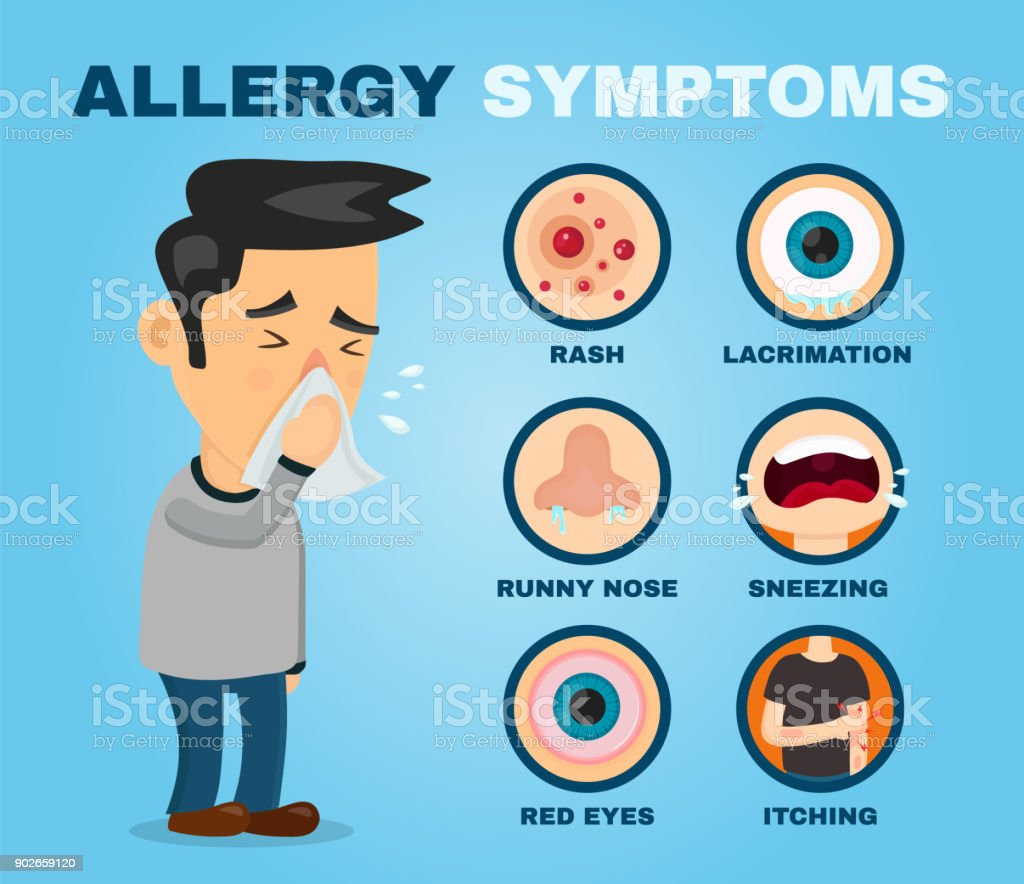Allergy Symptoms Problem Infographic Vector Stock ...