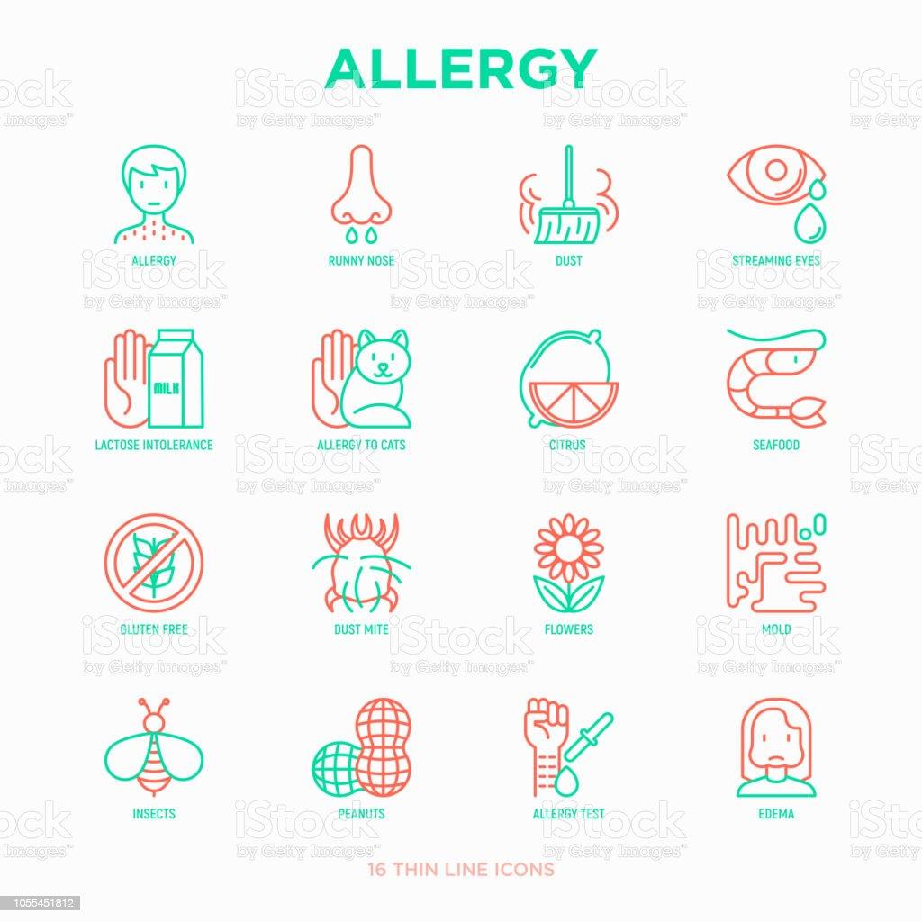 アレルギーの細い線アイコンを設定: 鼻水、埃、目、乳糖不耐症、柑橘類、魚介類、グルテン フリー、塵のダニ、花、金型、ピーナッツ、アレルギー テスト、浮腫をストリーミングします。 ベクターアートイラスト