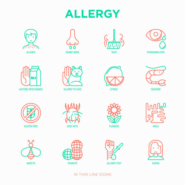 Allergy thin line icons set: runny nose, dust, streaming eyes, lactose intolerance, citrus, seafood, gluten free, dust mite, flower, mold, peanut, allergy test, edema. Modern vector illustration. vector art illustration