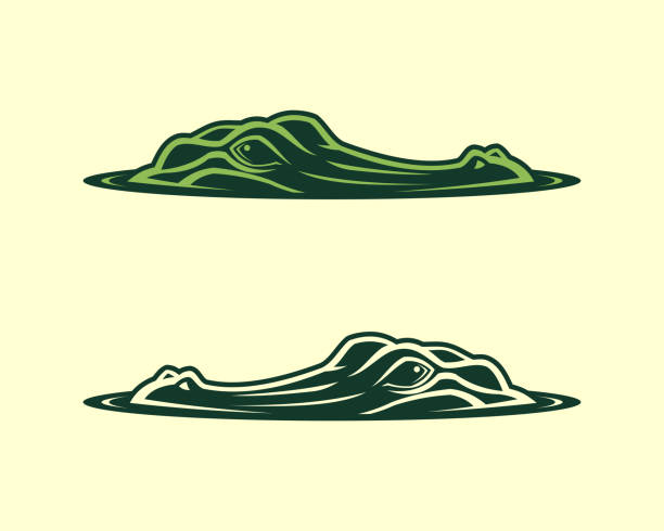 alligator head emerging from water vector icon - crocodile stock illustrations