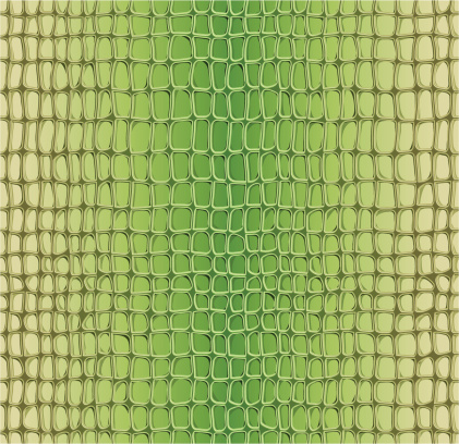 Alligator seamless pattern
