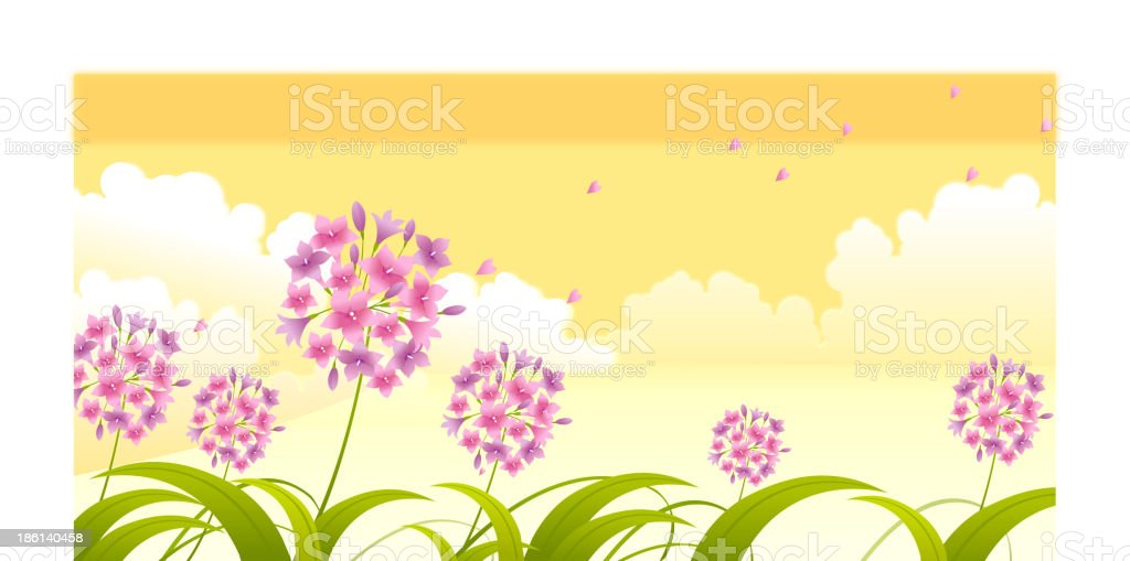 Allium flower against sky royalty-free stock vector art