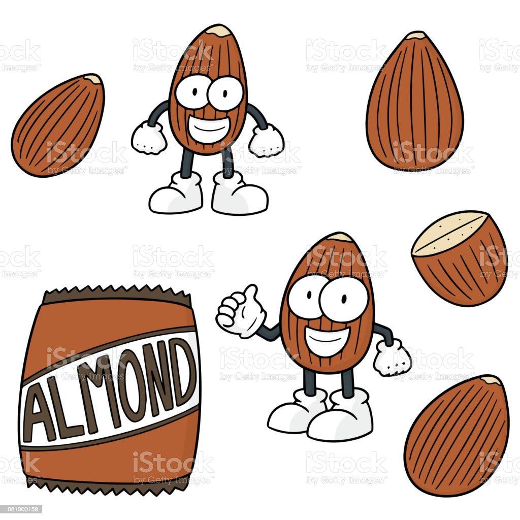 almond cartoon vector art illustration