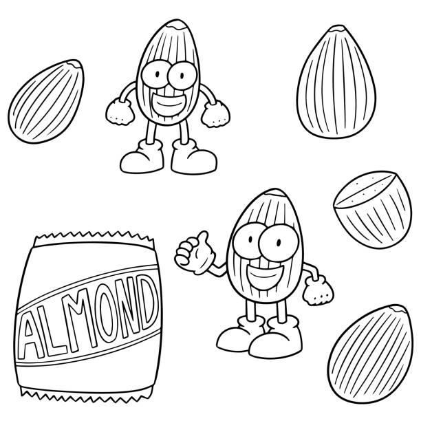 almond cartoon - square foot garden stock illustrations, clip art, cartoons, & icons