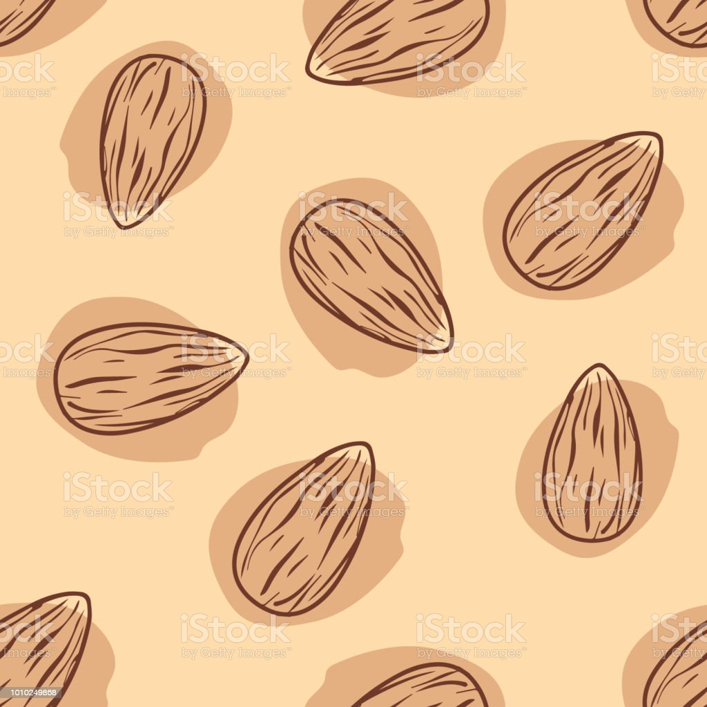Almond hand drawn seamless pattern, vector - Grafika wektorowa royalty-free (Białko)
