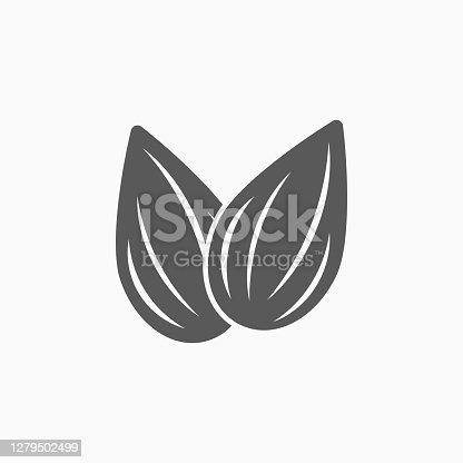 istock almond icon, almond vector 1279502499
