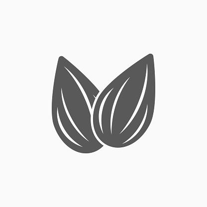 almond icon, almond vector