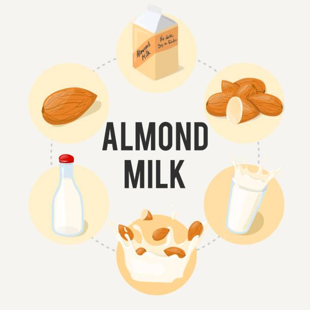 mandel milch infografik vektor ad-poster. gesunde ernährung cartoon illustration isoliert auf weißem hintergrund. - splash grafiken stock-grafiken, -clipart, -cartoons und -symbole