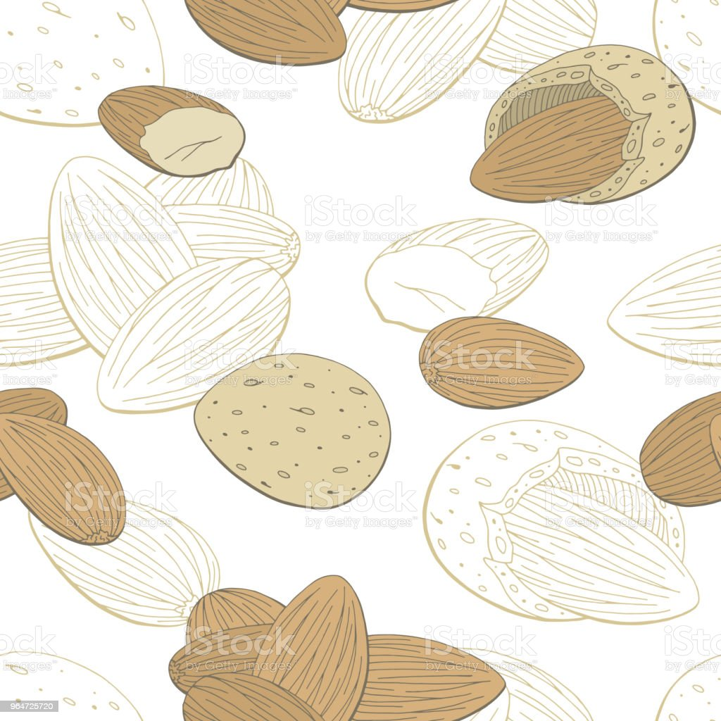 Almond nut graphic color seamless pattern background sketch illustration vector royalty-free almond nut graphic color seamless pattern background sketch illustration vector stock vector art & more images of almond