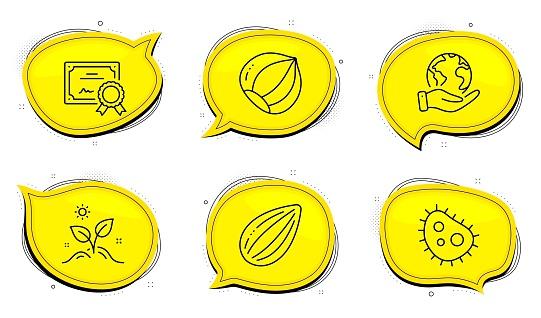 Almond nut, Hazelnut and Bacteria icons set. Grow plant sign. Vegetarian food, Vegetarian nut, Antibacterial. Vector