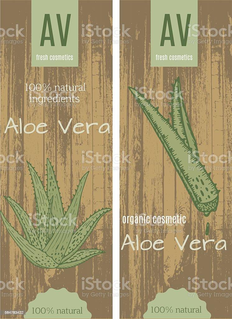 Aloe vera cards vector art illustration