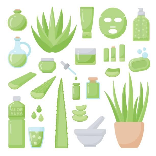 Aloe vera flat vector icons set vector art illustration