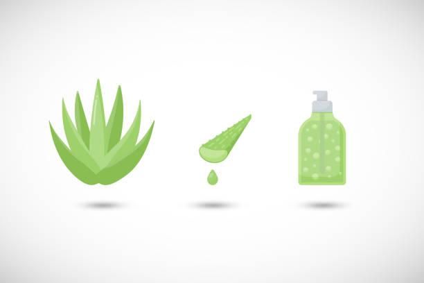 Aloe vera gel vector flat icons set vector art illustration