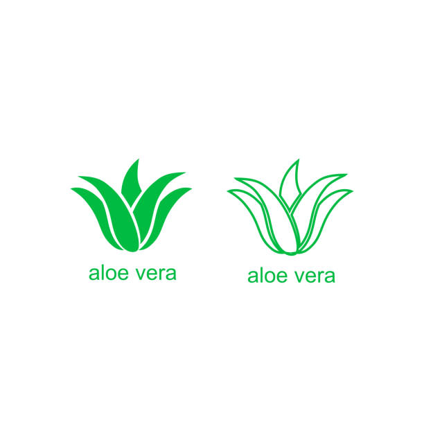 aloe vera green logo icon for natural organic product package label. isolated aloe vera leaf sign for cosmetic or moisturizer cream packaging design template - aloe vera stock illustrations