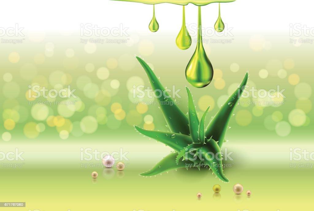 Perls vert l'Aloe vera, huile de gouttes, vert brillant brille - Illustration vectorielle