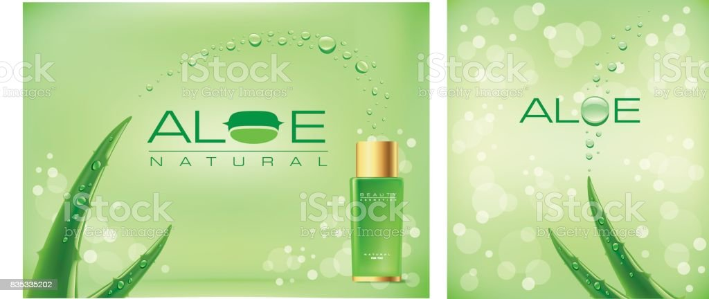 Aloe vera vert brillant brille - Illustration vectorielle