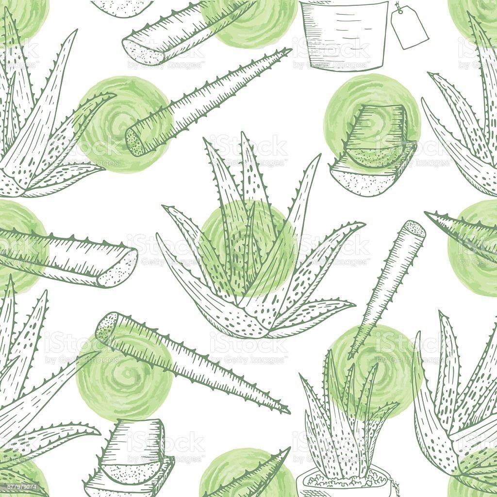 Aloe vera pattern - Illustration vectorielle