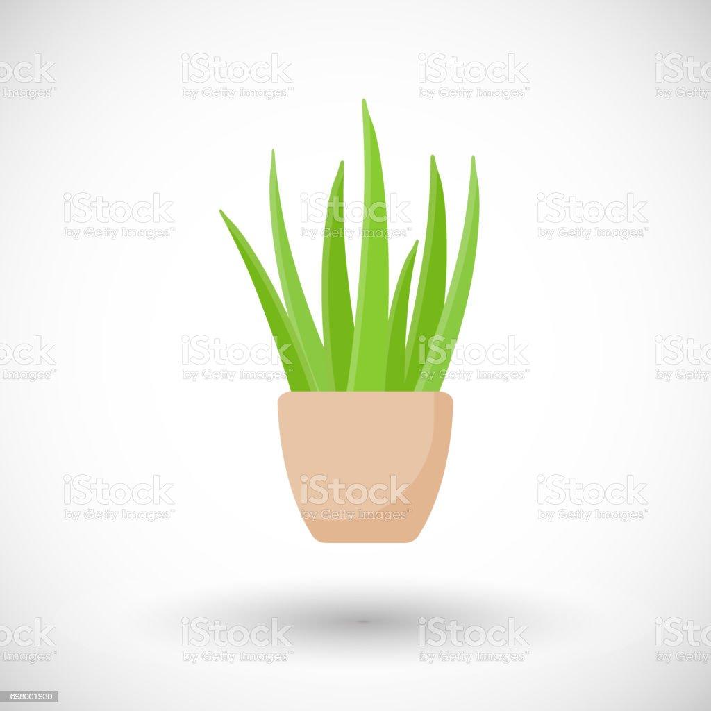 Aloe vera plant in pot vector flat icon vector art illustration