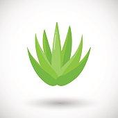 Aloe vera plant vector flat icon