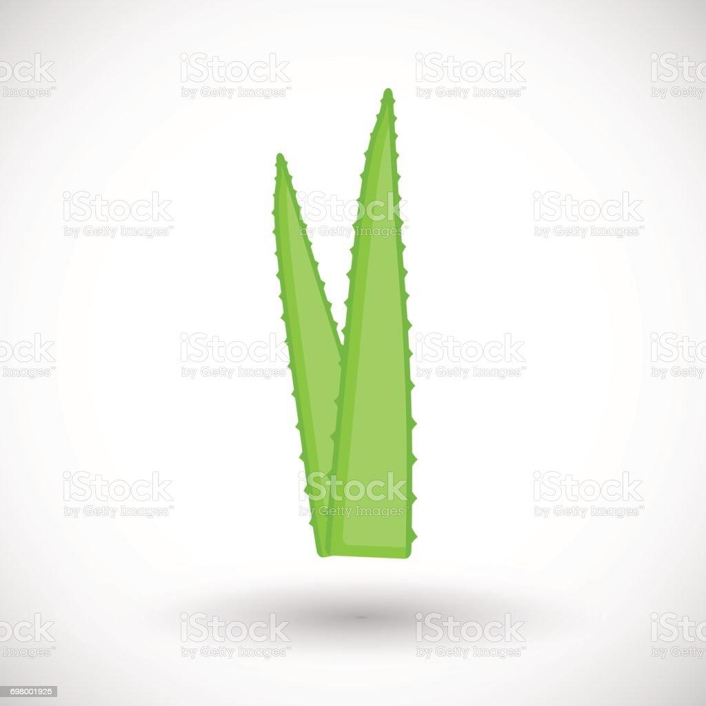 Icône plate du vecteur plante aloe vera - Illustration vectorielle