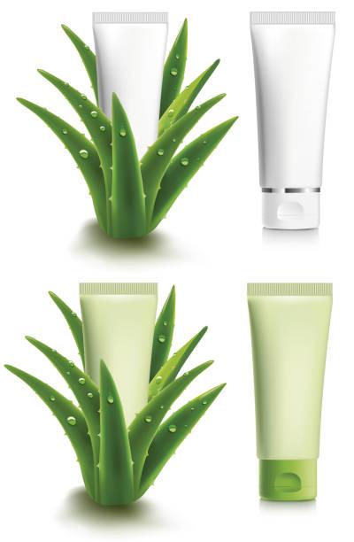 aloe vera with fresh water drops - design package - aloe vera stock illustrations