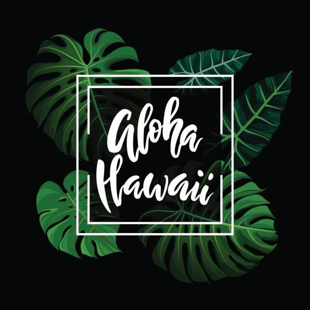 Aloha Hawaii Pinsel Schriftzug. – Vektorgrafik