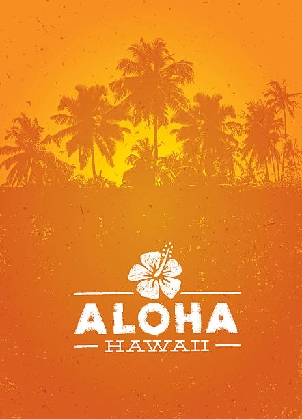 Aloha Hawaii Creative Summer Beach Tropical Vector Design Element Aloha Hawaii Creative Summer Beach Tropical Vector Design Element big island hawaii islands stock illustrations